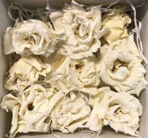 Preserved Lisianthus White