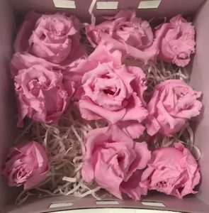 Preserved Lisianthus Pink